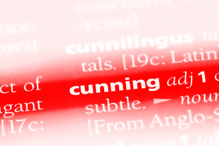 cunning word in a dictionary. cunning concept