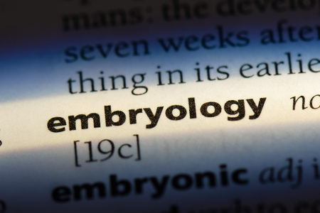 embryology word in a dictionary. embryology concept