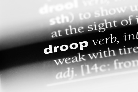droop word in a dictionary. droop concept