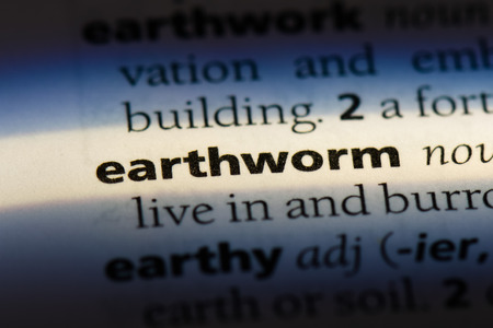 earthworm word in a dictionary. earthworm concept