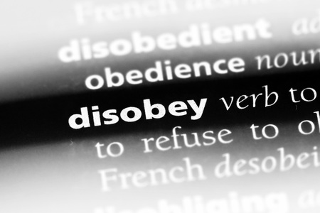 disobey word in a dictionary. disobey concept