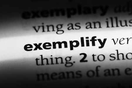 exemplify word in a dictionary. exemplify concept