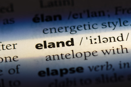 eland word in a dictionary. eland concept Stock Photo