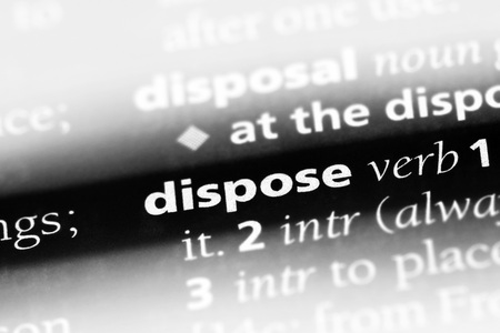 dispose word in a dictionary. dispose concept