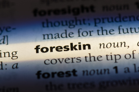 foreskin word in a dictionary. foreskin concept