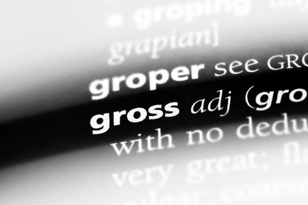 gross word in a dictionary. gross concept