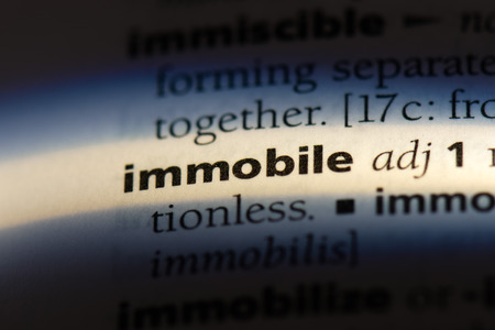 immobile word in a dictionary. immobile concept.