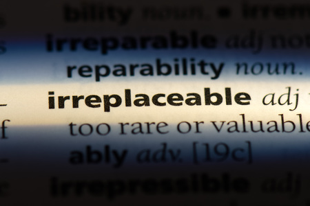 parola insostituibile in un dizionario. concetto insostituibile.