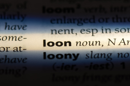 loon word in a dictionary. loon concept.