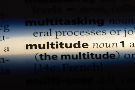 multitude word in a dictionary. multitude concept.