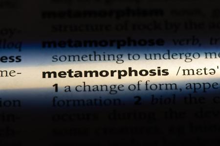 metamorphosis word in a dictionary. metamorphosis concept.