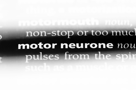 motor neurone word in a dictionary. motor neurone concept. Archivio Fotografico