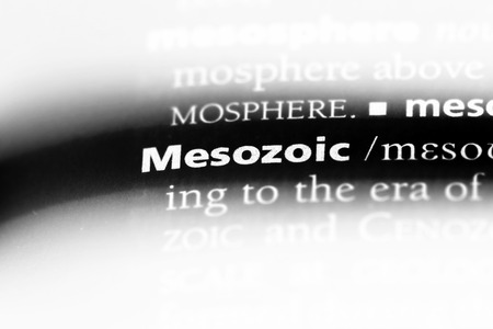 mesozoic word in a dictionary. mesozoic concept. Stock Photo