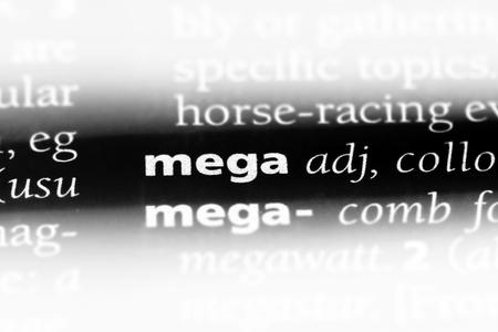 mega word in a dictionary. mega concept.