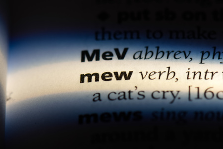 mew word in a dictionary. mew concept.