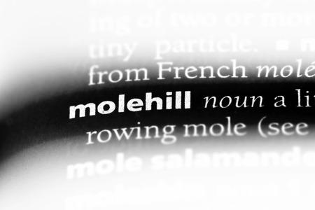 molehill word in a dictionary. molehill concept.
