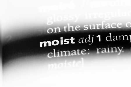 moist word in a dictionary. moist concept. Stock Photo