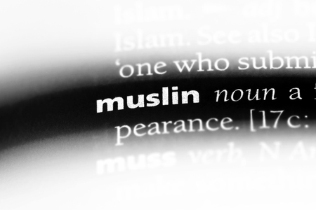 muslin word in a dictionary. muslin concept.