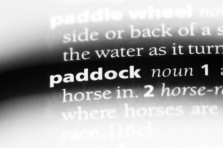 paddock word in a dictionary. paddock concept. Stock fotó
