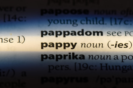 pappy word in a dictionary. pappy concept.