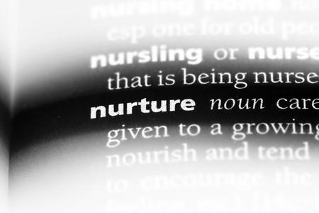 nurture word in a dictionary. nurture concept.