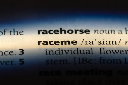 raceme word in a dictionary. raceme concept.