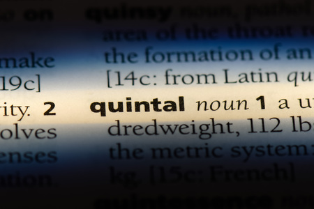 quintal word in a dictionary. quintal concept.