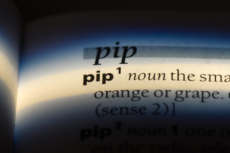 pip word in a dictionary. pip concept. Stock Photo