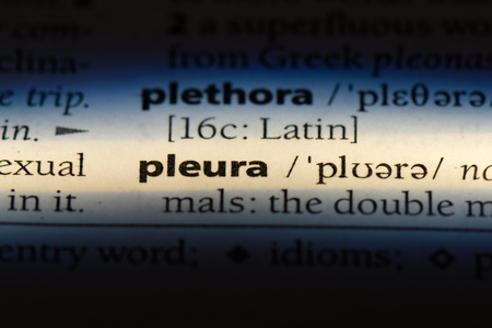 pleura word in a dictionary. pleura concept.