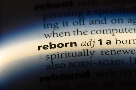 reborn word in a dictionary. reborn concept.