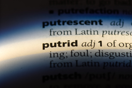 putrid word in a dictionary. putrid concept. Reklamní fotografie