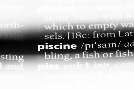 piscine word in a dictionary. piscine concept.