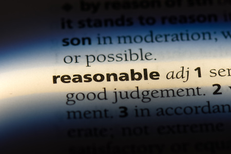 reasonable word in a dictionary. reasonable concept.