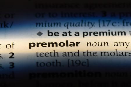 premolar word in a dictionary. premolar concept.