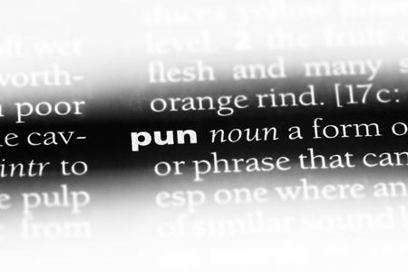 pun word in a dictionary. pun concept.