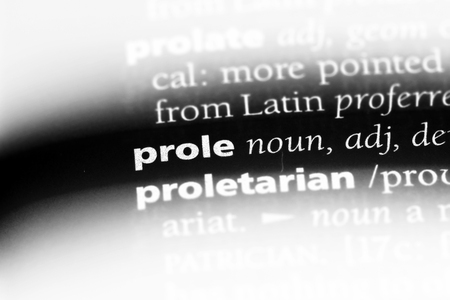 prole word in a dictionary. prole concept.