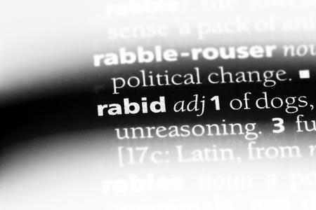 rabid word in a dictionary. rabid concept. Stock Photo