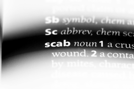 scab word in a dictionary. scab concept.