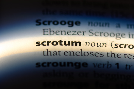 scrotum word in a dictionary. scrotum concept.