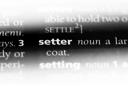 setter word in a dictionary. setter concept.