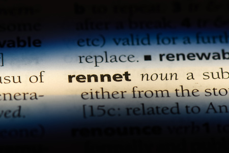 rennet word in a dictionary. rennet concept.
