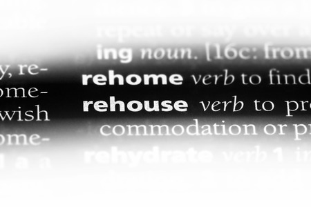rehouse word in a dictionary. rehouse concept.