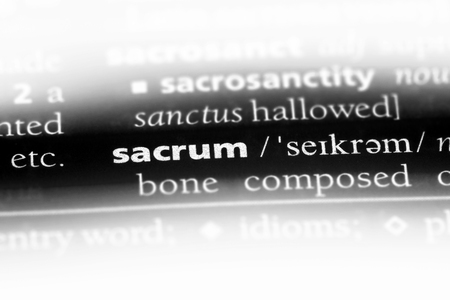 sacrum word in a dictionary. sacrum concept. Stock Photo