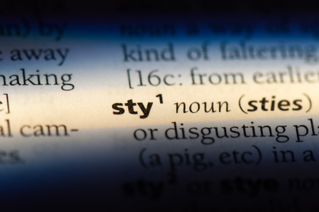 sty word in a dictionary. sty concept. Stock Photo