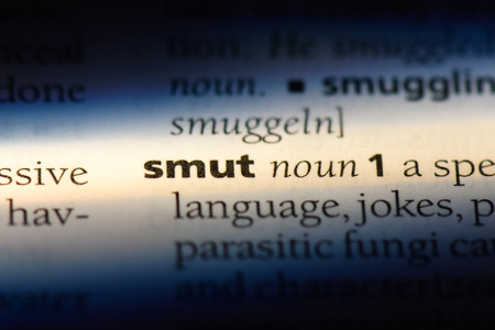 smut word in a dictionary. smut concept. Stock fotó