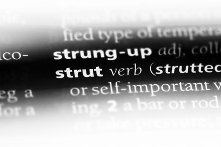 strut word in a dictionary. strut concept.