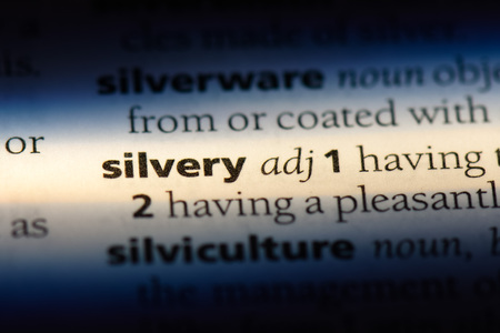 silvery word in a dictionary. silvery concept.
