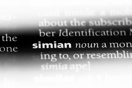 simian word in a dictionary. simian concept.