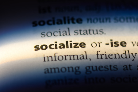 socialize word in a dictionary. socialize concept. Archivio Fotografico - 107384590