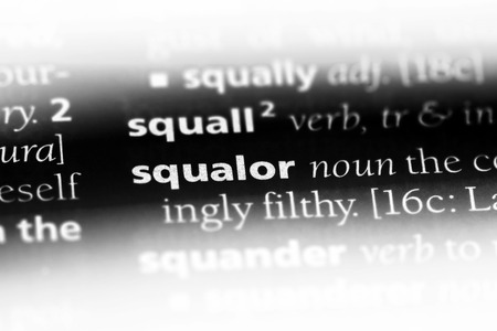 squalor word in a dictionary. squalor concept.